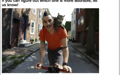 philly cat bike guy