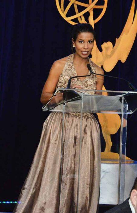2014 Mid-Atlantic Emmy Awards