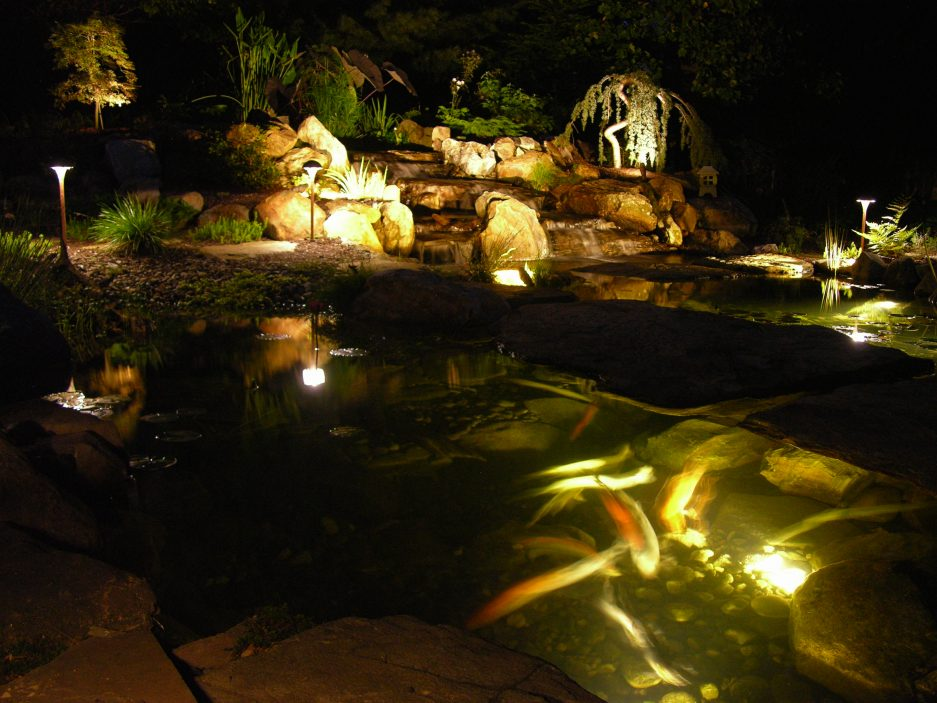 Trend Alert Make An Impact With Nightscaping