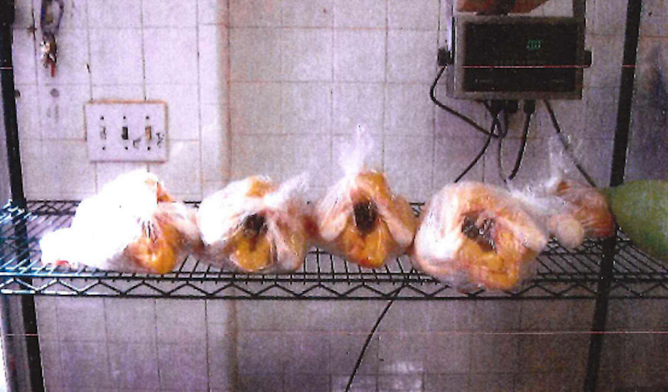 live-chicken-market-south-philadelphia