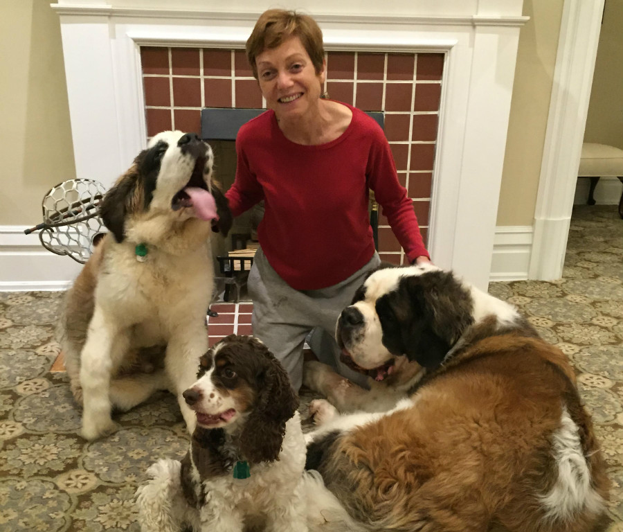 Wollman and her dogs. From L to R: Oliver, Leila, and Brock.