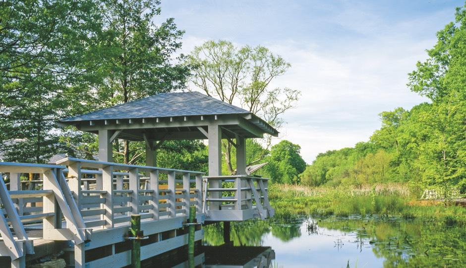 Con Edison Pond Gallery