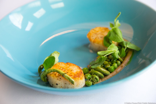 Scallop and Almonds