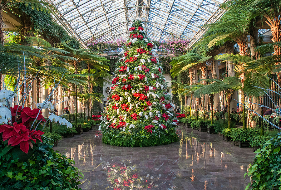 Longwood Gardens Christmas.12 Reasons A Longwood Christmas Should Be 1 On Your Holiday