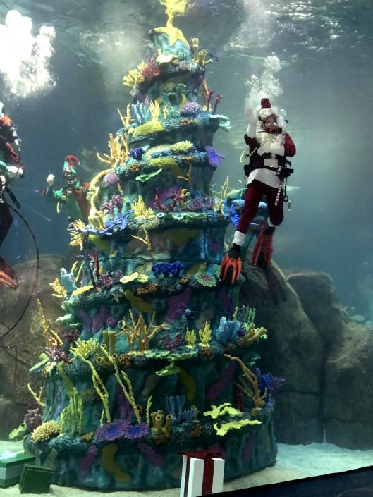 A Parent S Guide To Adventure Aquarium S Christmas Underwater Philadelphia Magazine