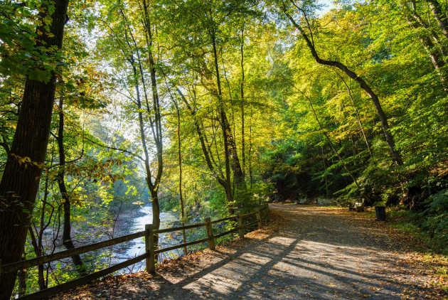 The Wissahickon's Forbidden Drive Voted the Pennsylvania Trail of the Year