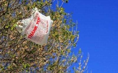 plastic bags, plastic bag