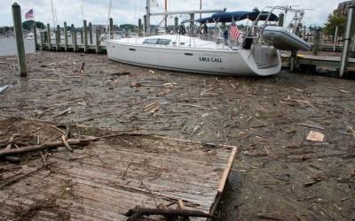 maryland, trash, chesapeake bay