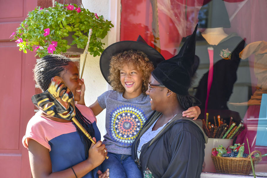chestnut hill neighborhood guide witches and wizards