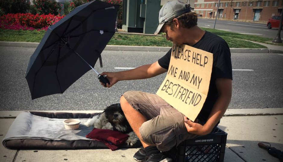 philly woman wants to open first homeless shelter for people and pets