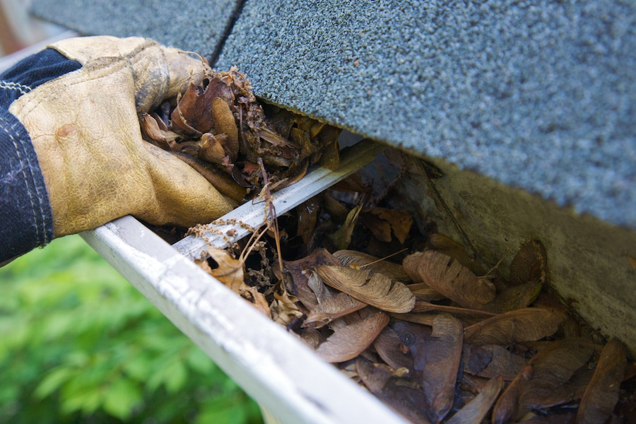 fall home tips cleaning gutters