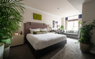 hotel palomar green room
