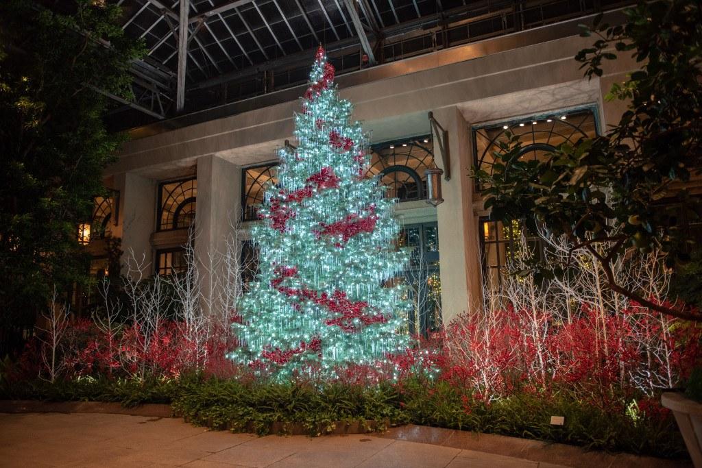 longwood-christmas-lights
