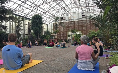 fairmount park greenhouse yoga