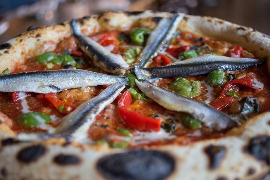 best pizza northwest philadelphia