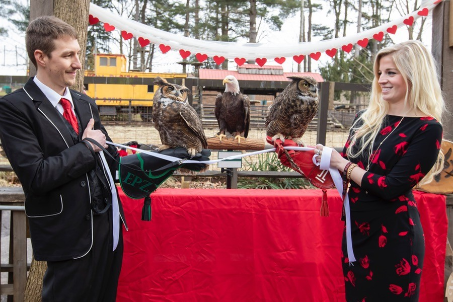 temple university owl mascot wedding