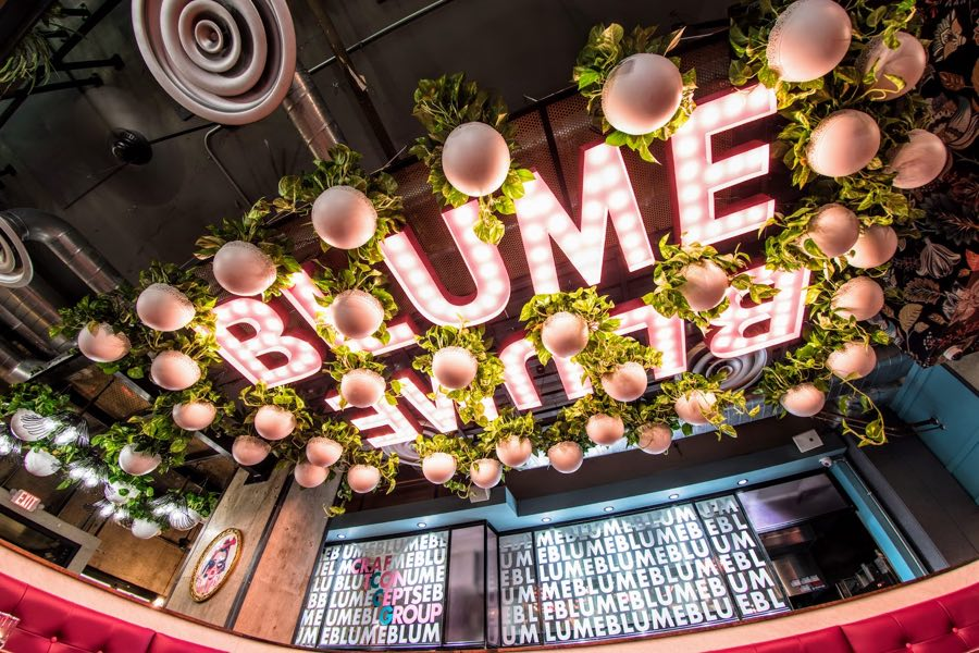 Rittenhouse Restaurant And Natural Wine Bar Blume Is About