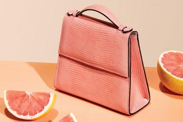 tiny purse trend
