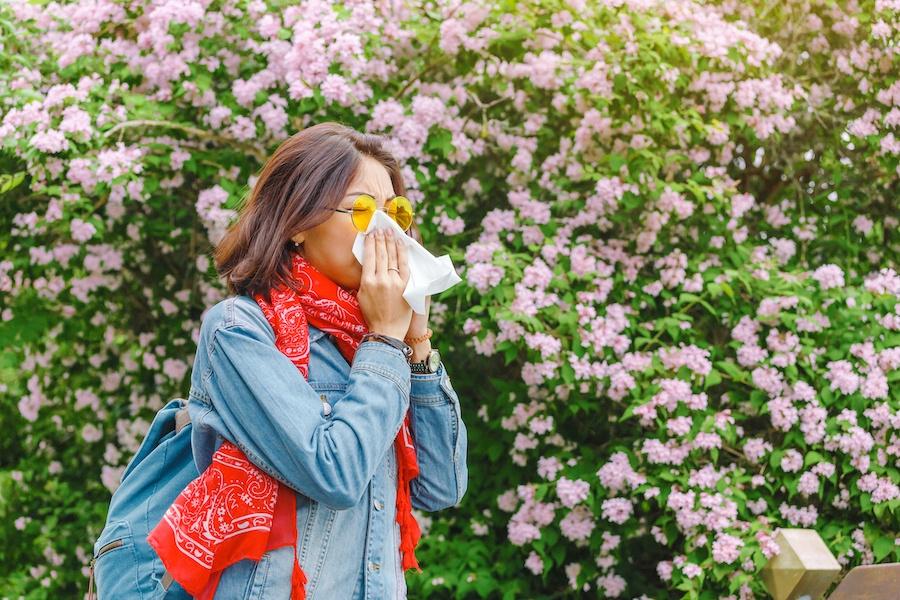allergy relief options