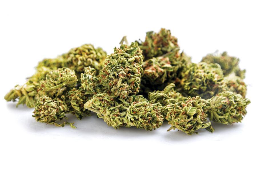 pennsylvania cannabis