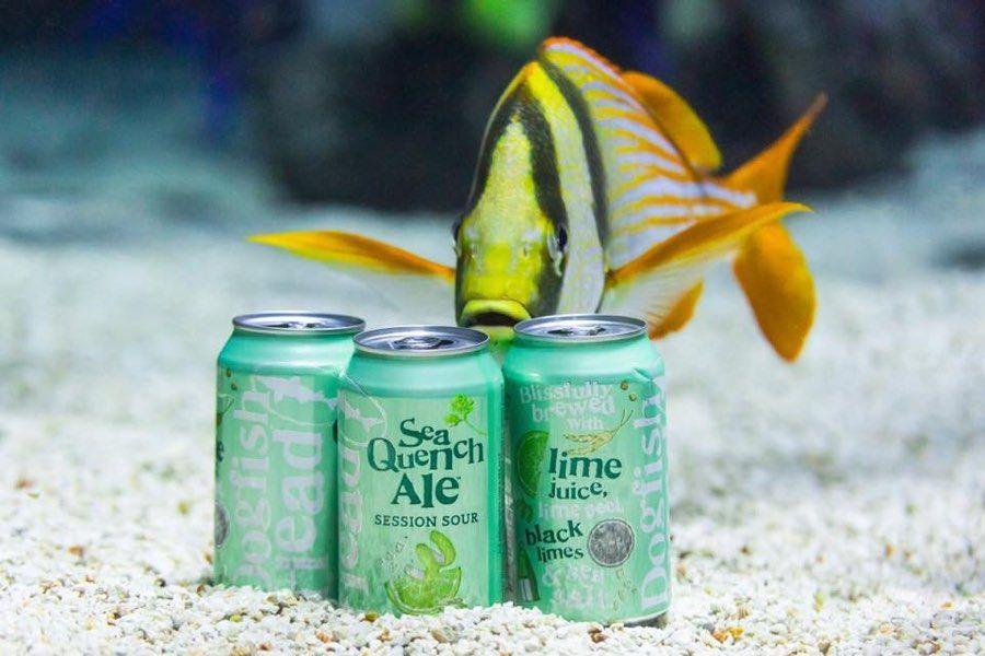 philadelphia summer beers