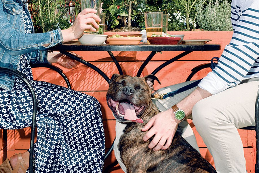 dog-friendly restaurants