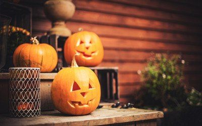 national halloween association pumpkin