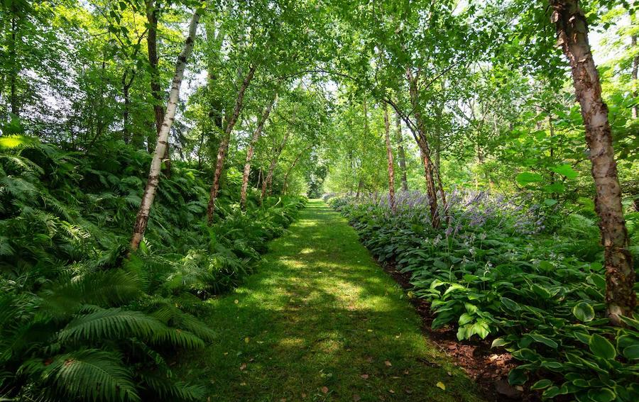 house for sale wrightstown hortulus farm woodland path