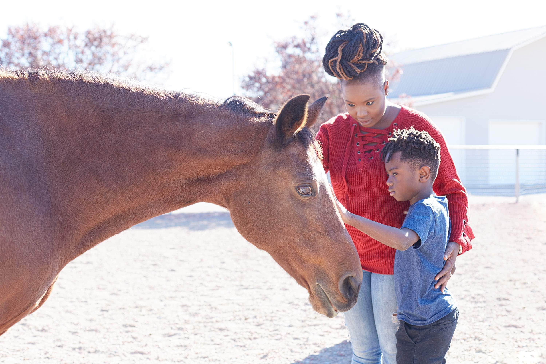 horses mental health