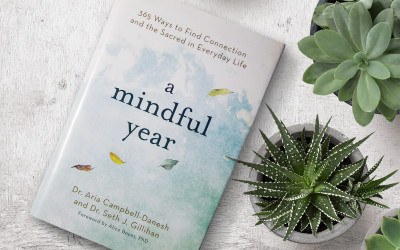 mindful practices book