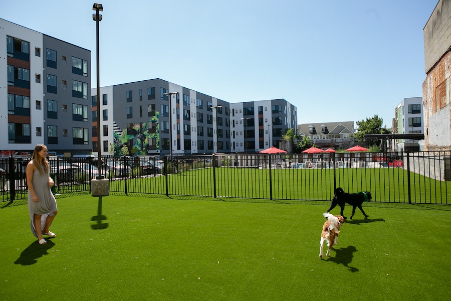 the hub at 31 brewerytown apartment profile dog park