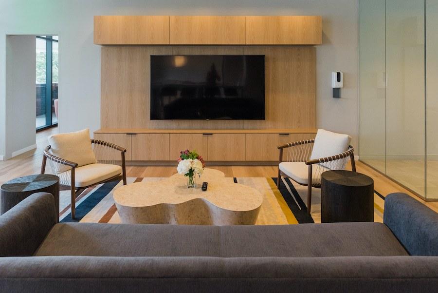 the chestnut apartment profile media lounge