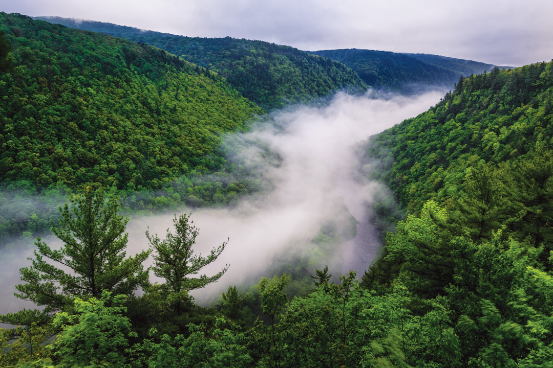 pine creek state park