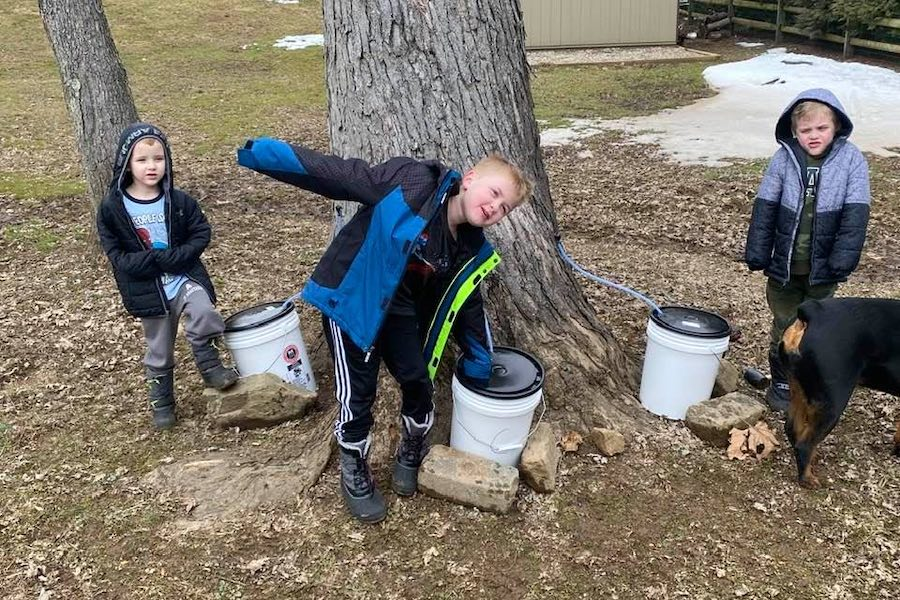 children in newtown square working on their maple syrup project