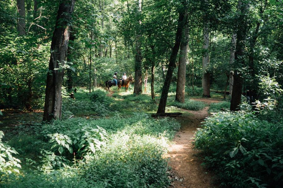peaceful hikes