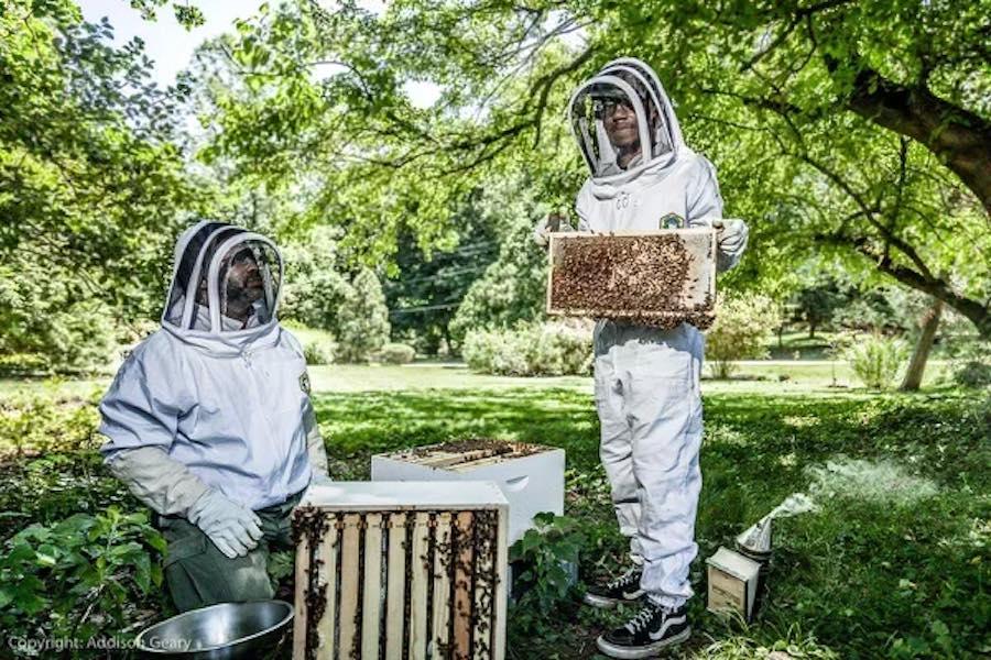 philadelphia beekeepers Sharif El-Mekki and his son