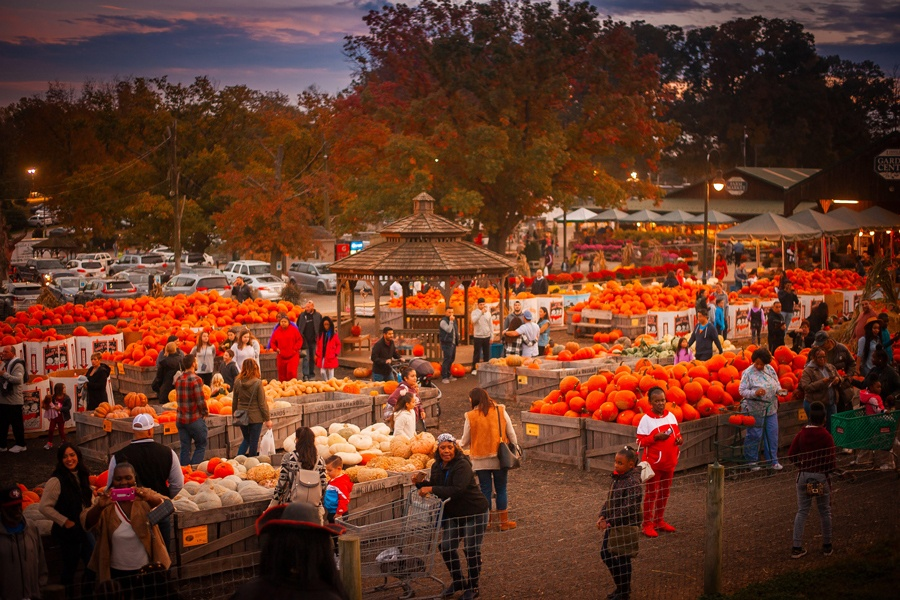things to do halloween weekend linvilla